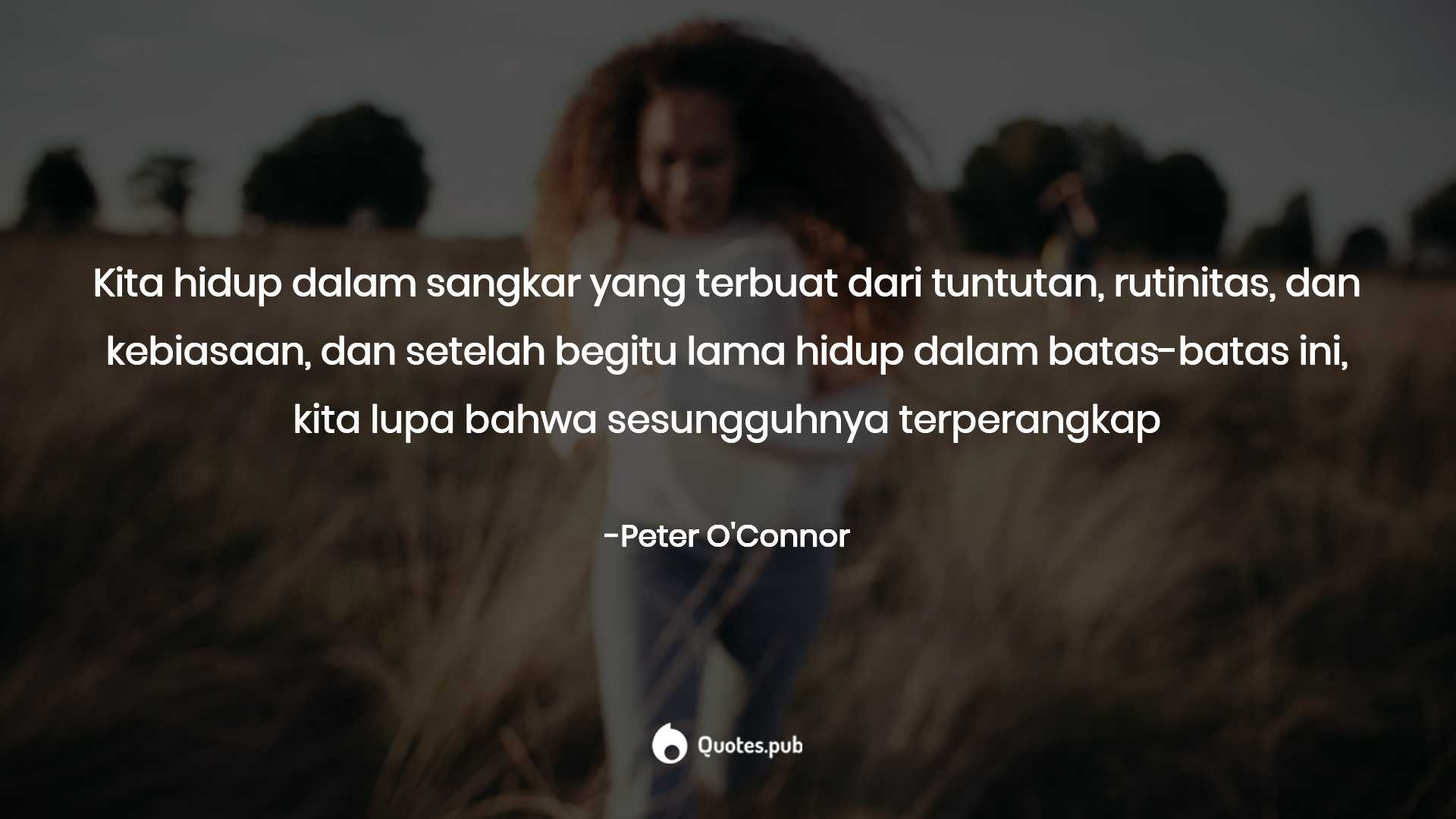 peter o connor quotes collection quotes pub